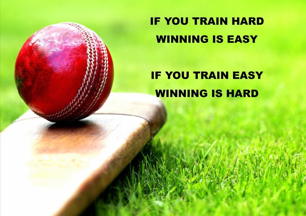 cricket is life quotes